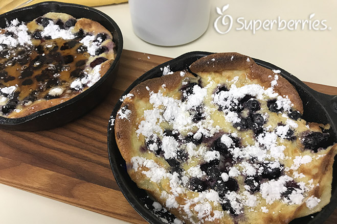 Aronia Dutch Pancake